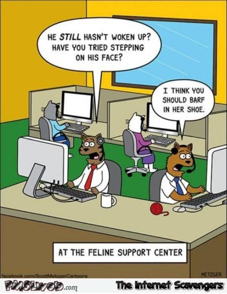 Feline support center funny cartoon @PMSLweb.com