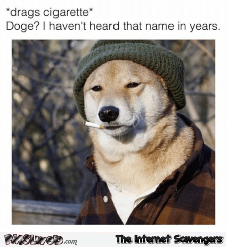 Doge I haven't heard that name in years funny meme @PMSLweb.com