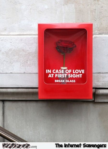 In case of love at first sight humor @PMSLweb.com