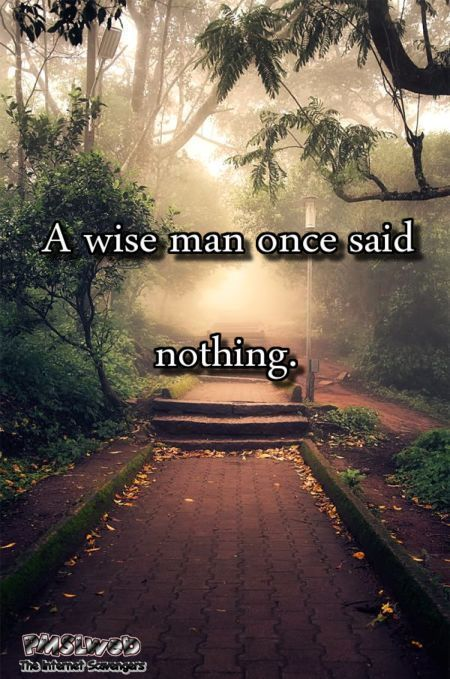 Once a wise man said nothing funny sarcastic quote @PMSLweb.com