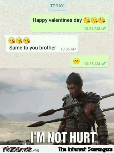 Friendzoned on Valentines day funny text @PMSLweb.com