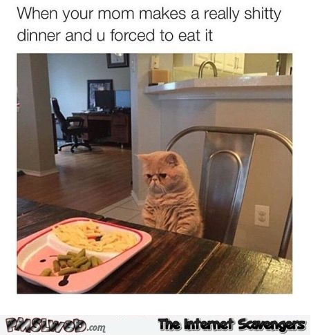 When your mum forces you to eat a shitty dinner meme - Funny Saturday picture zone @PMSLweb.com