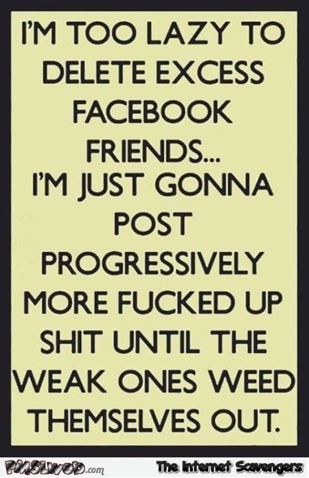 I'm too lazy to delete excess Facebook friends sarcastic humor @PMSLweb.com