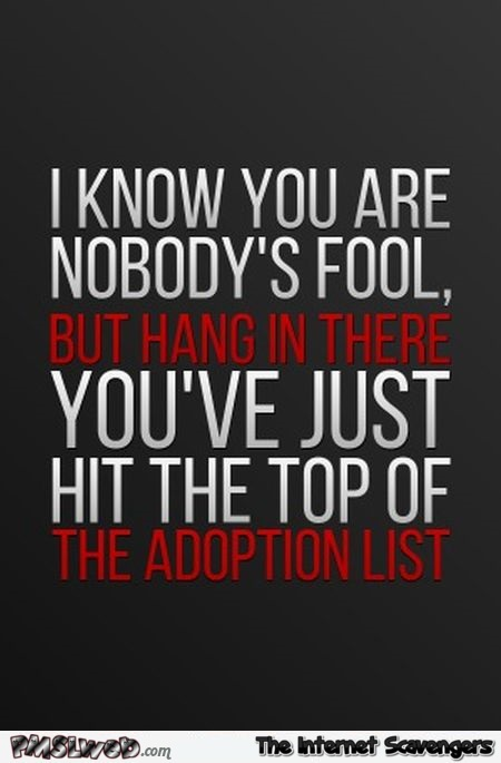 I know you are nobody's fool funny sarcastic quote - Sarcastic and funny pictures @PMSLweb.com
