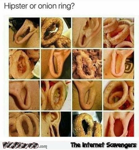 Hipster or onion ring funny meme @PMSLweb.com