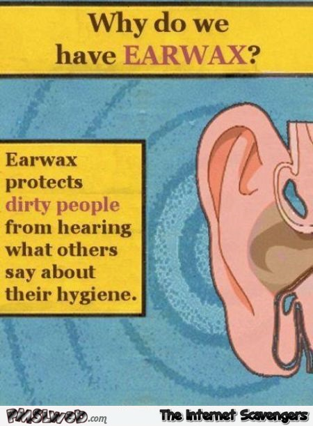 Why do we have earwax sarcastic humor @PMSLweb.com