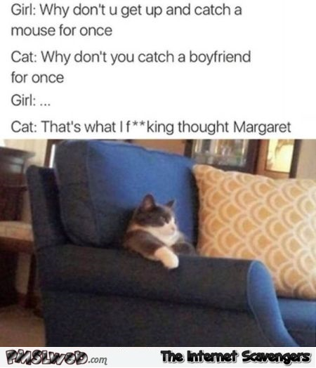 Get up and catch a mouse for once funny sarcastic cat meme - Funny daily nonsense @PMSLweb.com