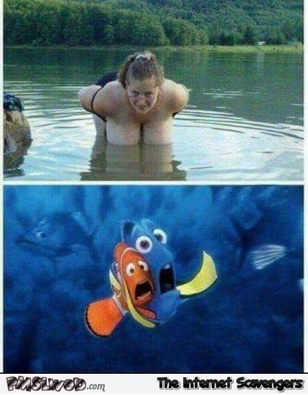 How to scare Marlin and Dory adult humor