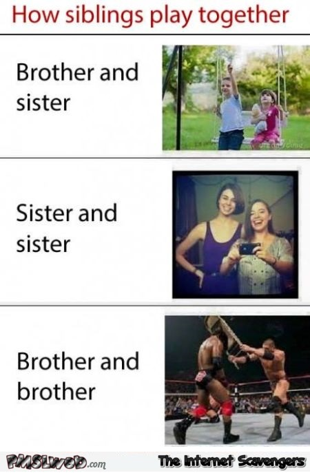 How siblings play together funny meme @PMSLweb.com