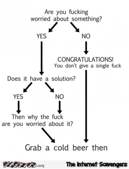 Are you worried about something funny sarcastic flowchart @PMSLweb.com