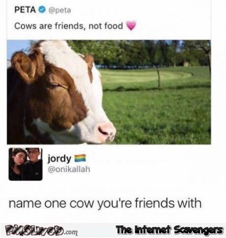 Cows are friends not food funny comment @PMSLweb.com