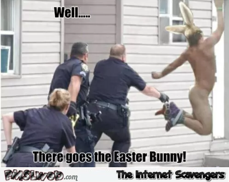 There goes the Easter bunny funny meme - Hilarious Easter pictures @PMSLweb.com