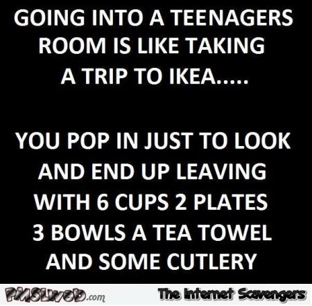 Going into a teenagers room is like talking a trip to Ikea funny quote @PMSLweb.com