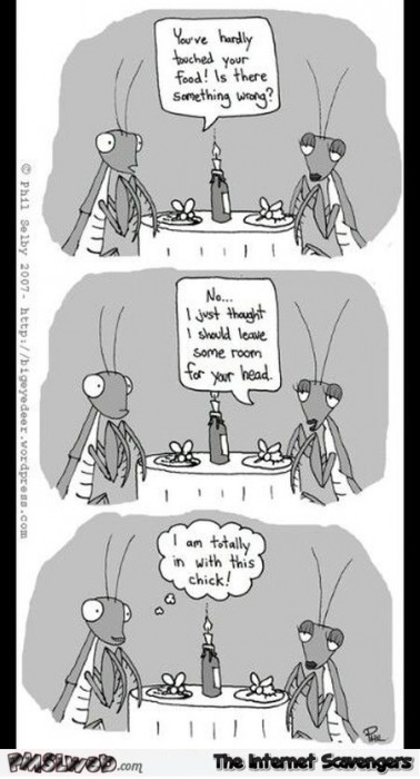 Funny adult praying mantis cartoon