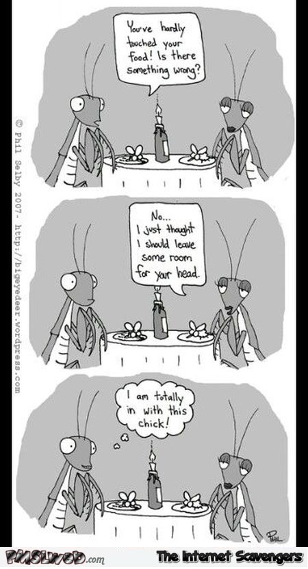 Funny adult praying mantis cartoon @PMSLweb.com