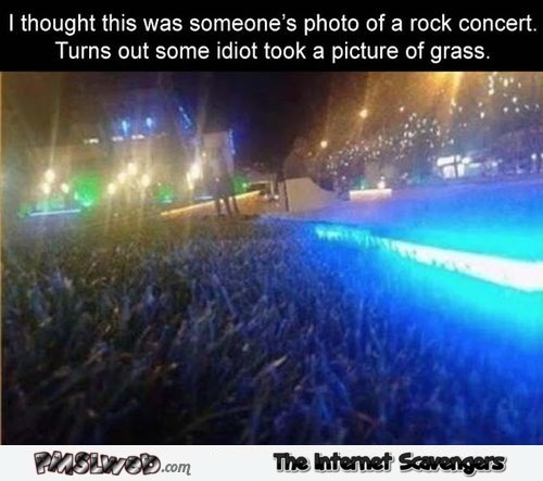 I thought this was a rock concert photo funny meme - Silly Hump day YLYL @PMSLweb.com
