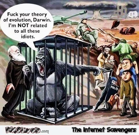 Gorilla does not believe in the theory of evolution sarcastic humor @PMSLweb.com