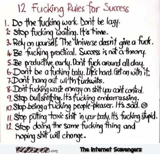 12 fucking rules for success sarcastic humor