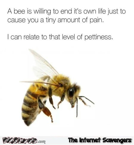 I can relate to that level of pettiness funny meme - Lighthearted Monday nonsense @PMSLweb.com