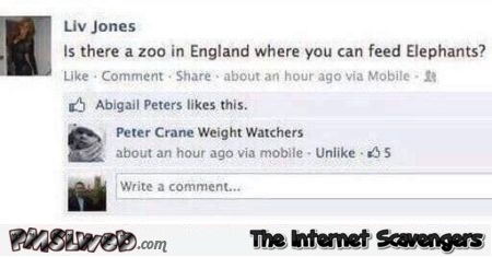 A zoo in England where you can feed elephants funny inappropriate Facebook comment @PMSLweb.com