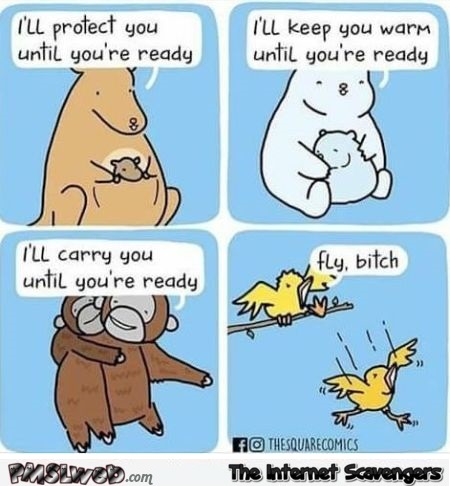 Birds are asshole parents funny cartoon @PMSLweb.com