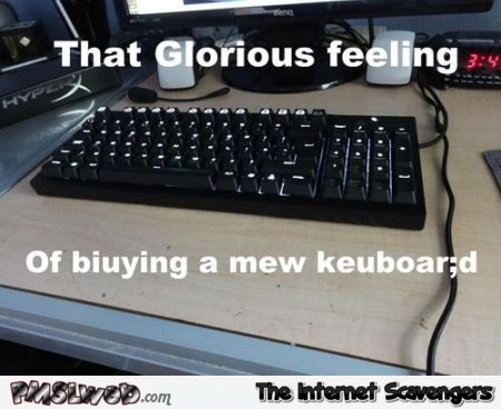 The glorious feeling of buying a new keyboard funny meme @PMSLweb.com