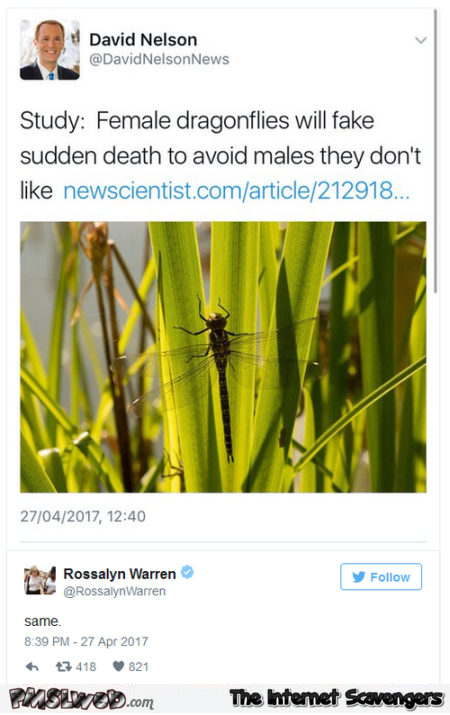 Funny female dragonflies tweet @PMSLweb.com
