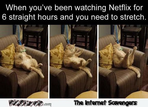 When you're watching netflix and need to stretch funny meme @PMSLweb.com