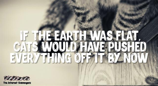 If the earth was flat funny cat quote @PMSLweb.com
