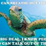 Turtles can breathe out their butts sarcastic humor @PMSLweb.com