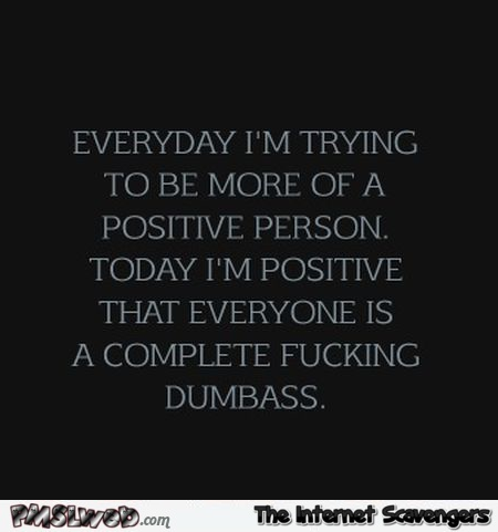 Everyday I try and be more of a positive person sarcastic humor - Funny adult nonsense @PMSLweb.com
