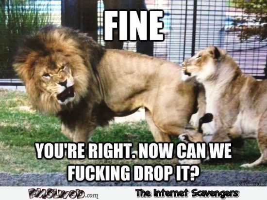Lion tells lioness she is right funny meme @PMSLweb.com