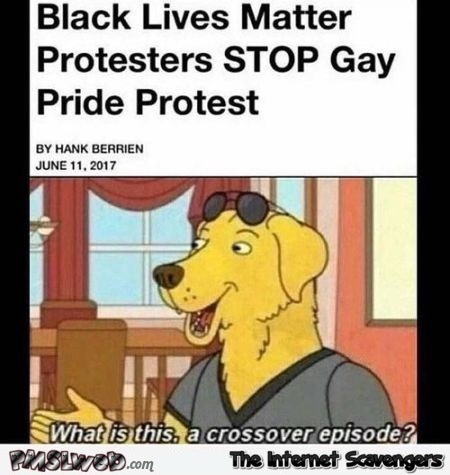 Black lives matter gay pride protest crossover episode humor - Funny Sunday Nonsense @PMSLweb.com