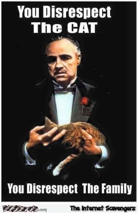 If you disrespect the cat funny godfather meme - Funny Thursday picture gallery @PMSLweb.com