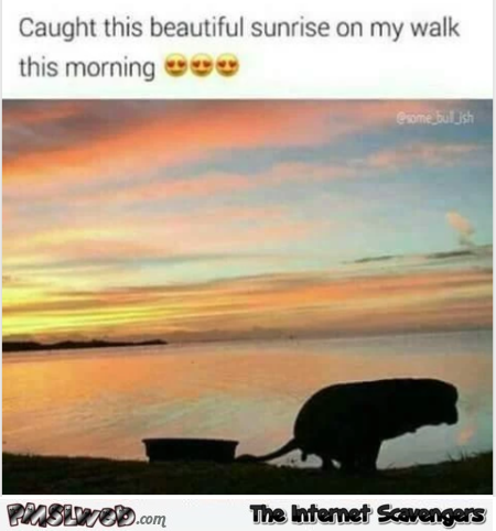 I caught this beautiful sunrise this morning funny meme @PMSLweb.com