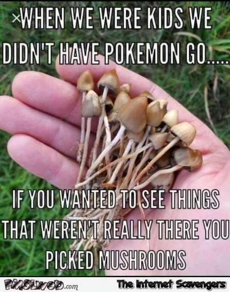 When we were kids we didn't have Pokemon go funny meme @PMSLweb.com