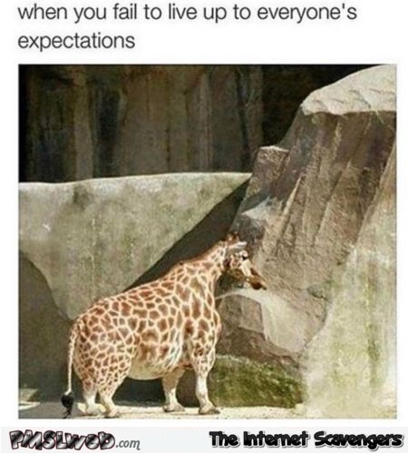 When you fail to live up to everyone's expectations funny meme @PMSLweb.com