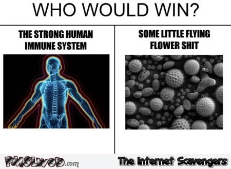 Who would win funny allergy meme @PMSLweb.com