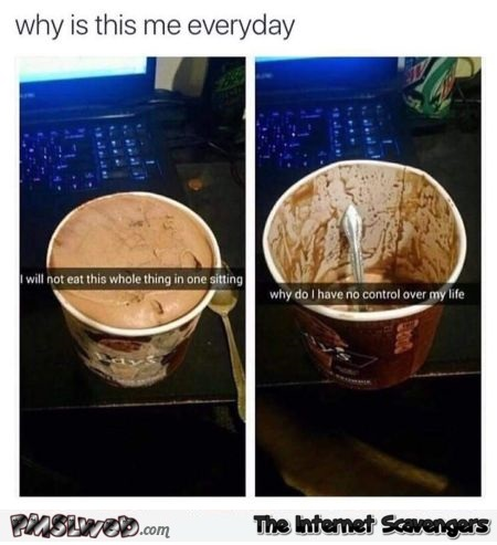 I should not eat a whole ice cream in one sitting funny meme @PMSLweb.com