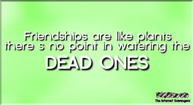 Friendships are like plants funny quote - Very funny memes and pictures @PMSLweb.com