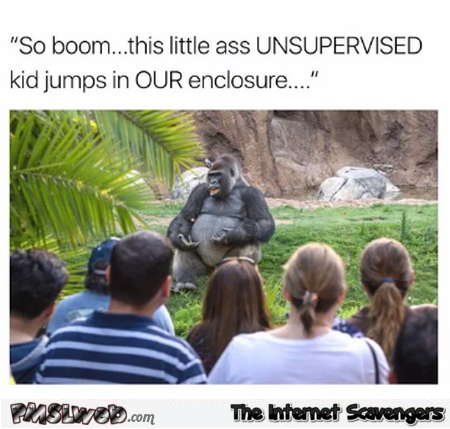Gorilla telling the story of Harambe funny meme @PMSLweb.com
