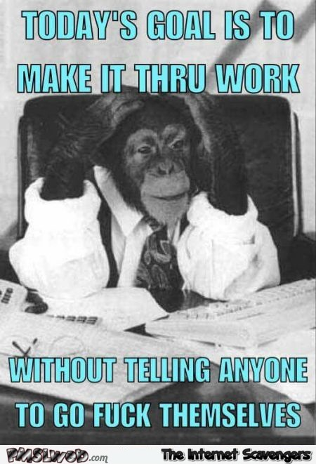 Today's goal at work funny sarcastic meme - Funny sarcastic images @PMSLweb.com