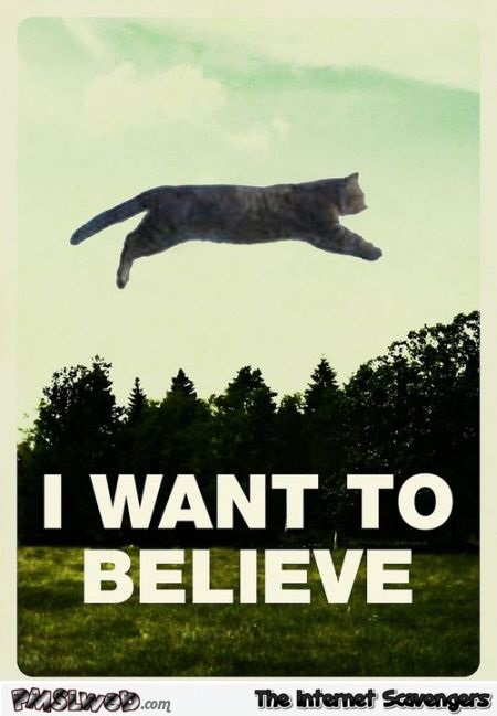 I want to believe funny cat poster @PMSLweb.com