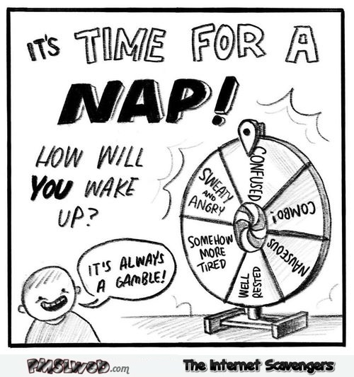 Wheel of nap funny comic - Funny picture and meme collection @PMSLweb.com