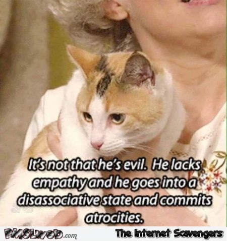 It's not that he's evil funny cat meme @PMSLweb.com