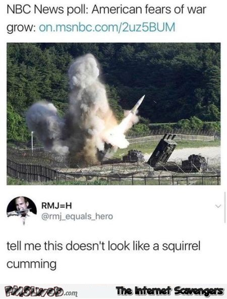 This looks like a squirrel cumming funny comment - Very funny pics and memes @PMSLweb.com