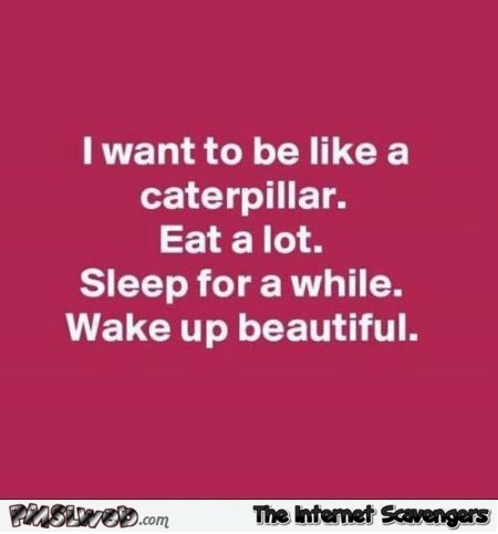 I want to be like a caterpillar funny quote @PMSLweb.com