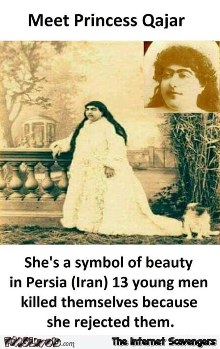 Meet Princess Qajar funny fact @PMSLweb.com