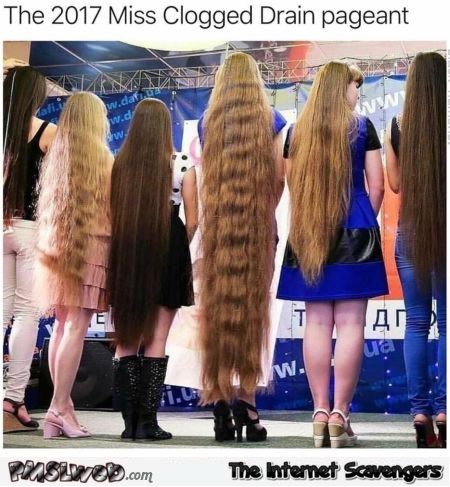 Miss clogged drain pageant funny meme @PMSLweb.com