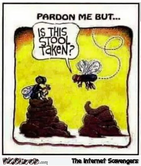 Is this stool taken funny fly cartoon @PMSLweb.com